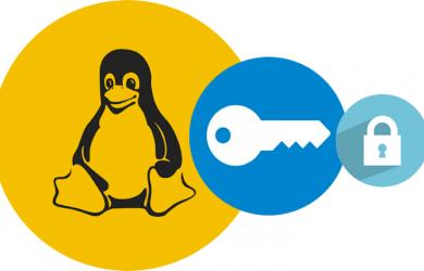 Linux-Fehler öffnet die meisten VPNs für Entführungen