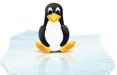 'Dirty Sock'-Fehler in Snapd ermöglicht Root-Zugriff auf Linux-Server